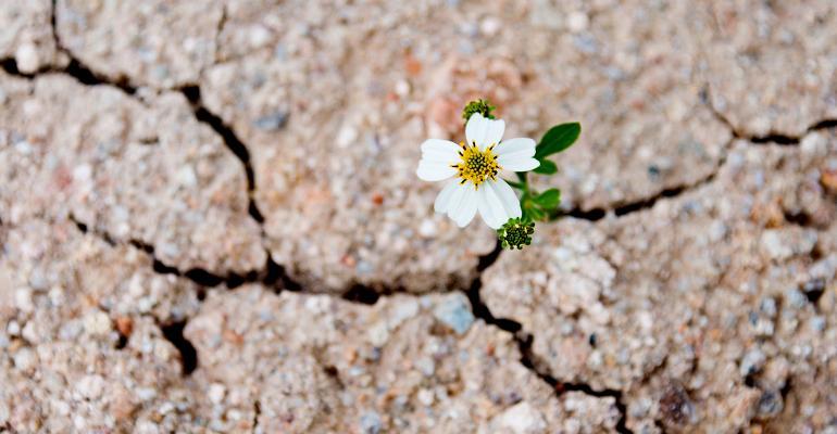 Resiliency_iStock-470628256_1540x800.jpg