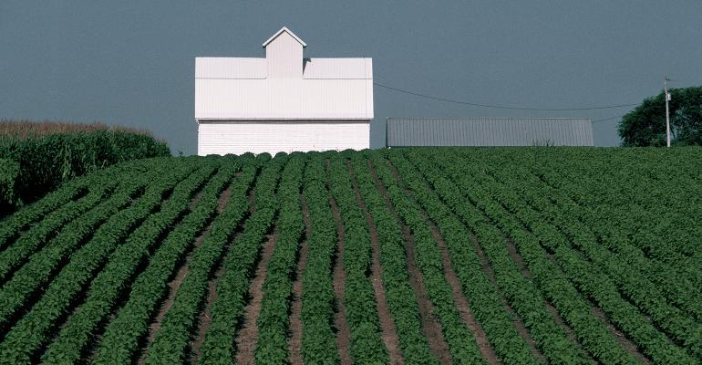 farm-white-house.jpg