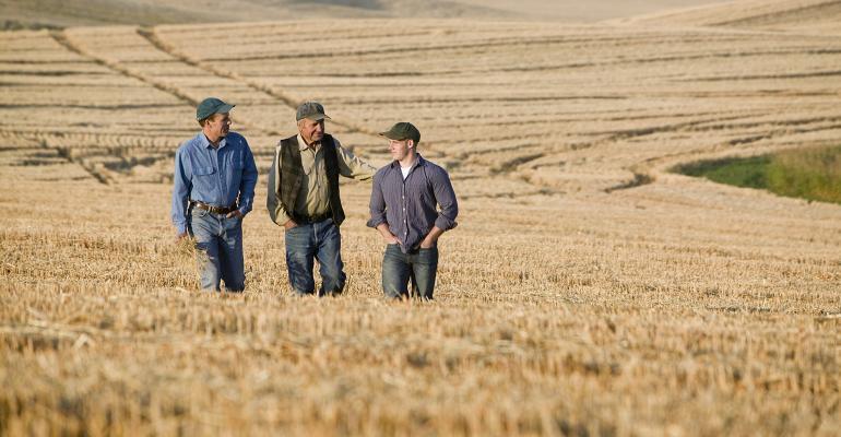 father-son-grandson-field.jpg