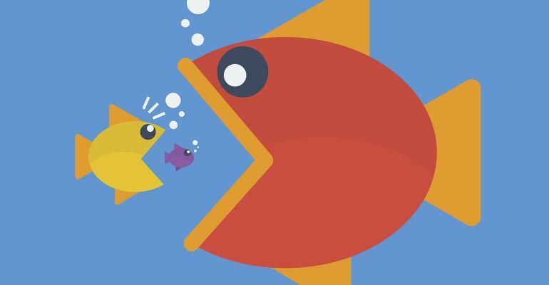 mergers-big-eat-little-fish.jpg