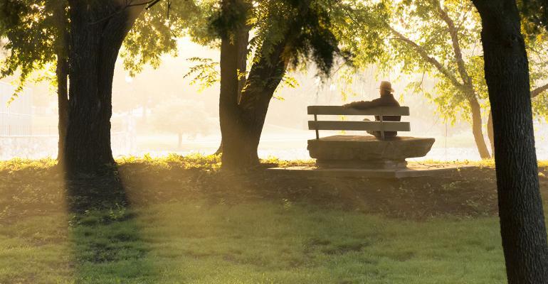 retired on park bench