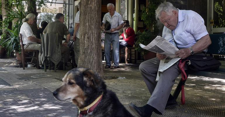 retiree reading newspaper with dog