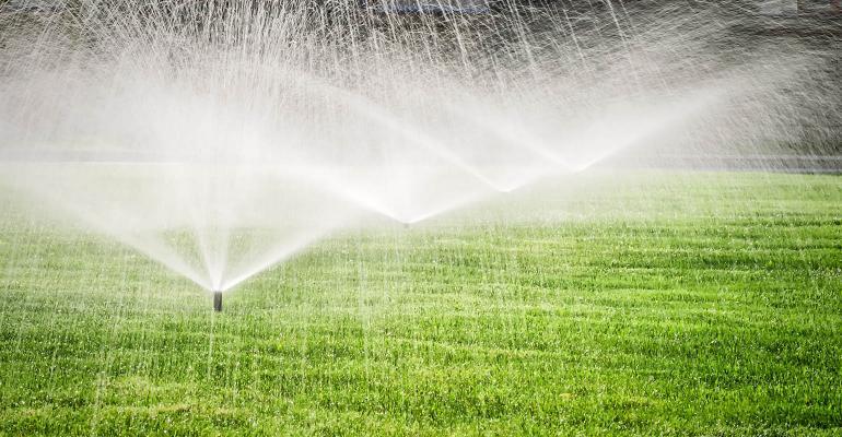 rizzo-garden sprinkler.jpg