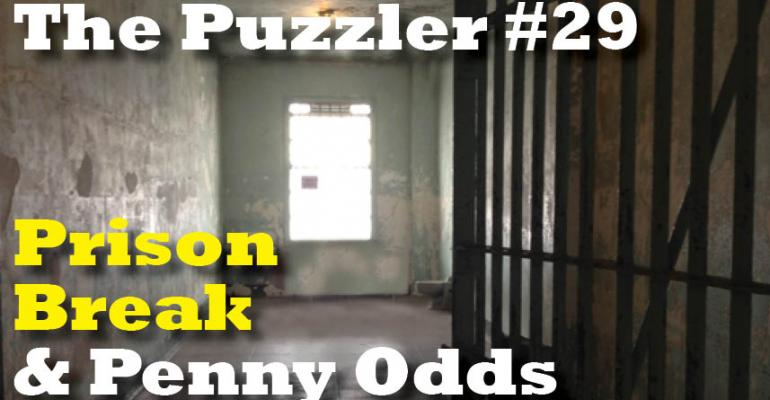 The Puzzler #29