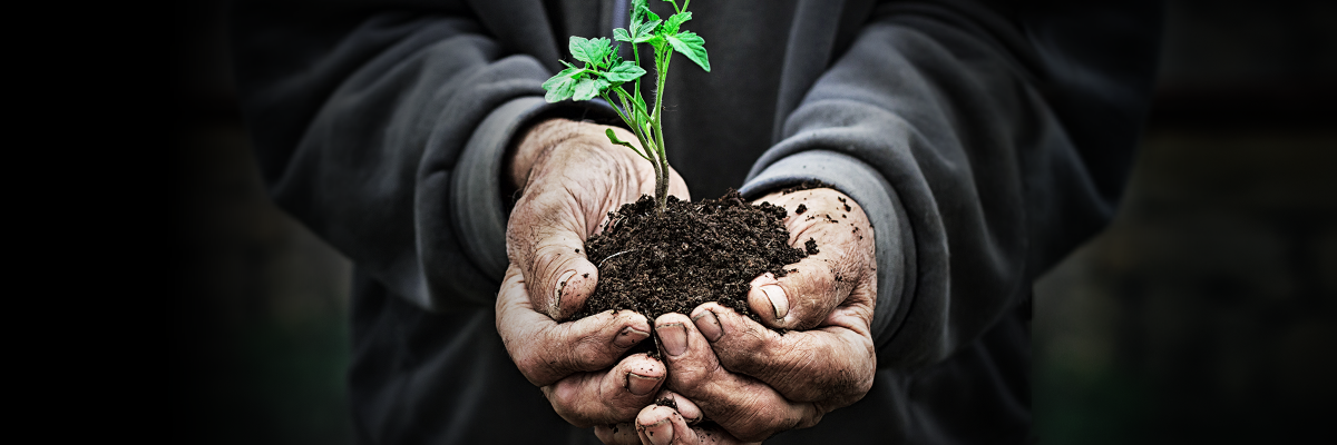 The Future of Wealth Management is ESG Investing