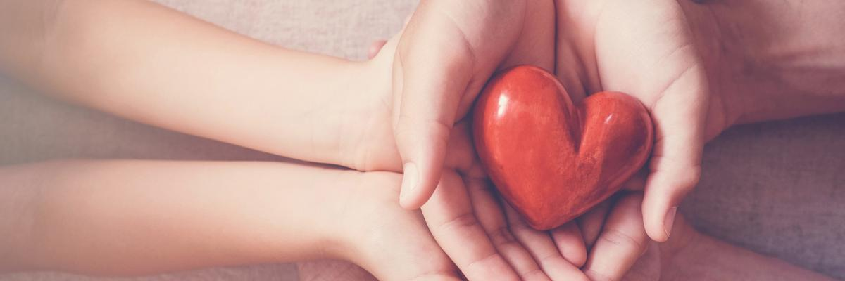 Charitable Giving Report Download 2019