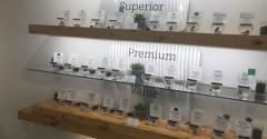 marijuana-store