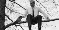 businessman-sawing-tree-limb.jpg