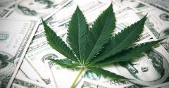 marijuana-leaf-dollars.jpg