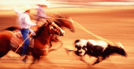cowboys-roping-steer-blur.jpg