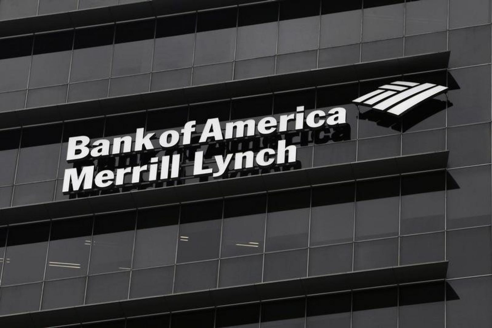 Bank Of America Merrill Lynch Eyeing Asset Manager Diversity Wealth Management