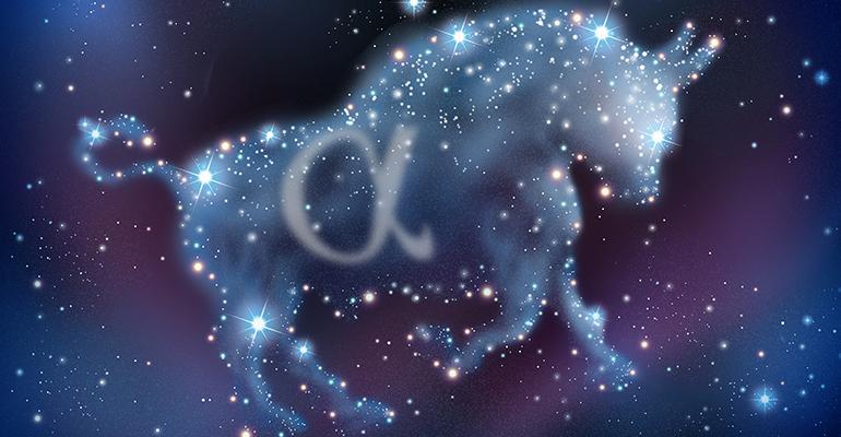 alpha bull stars