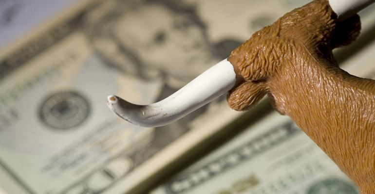 bull money