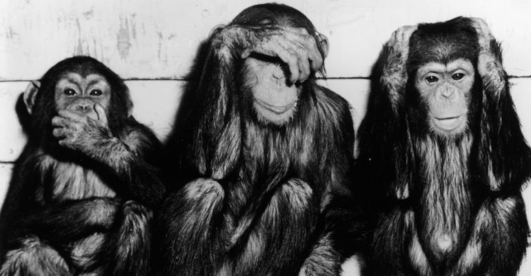 Monkeys hear no evil see no evil