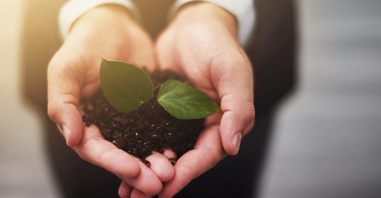 4 Ways to Grow Your Business Organically