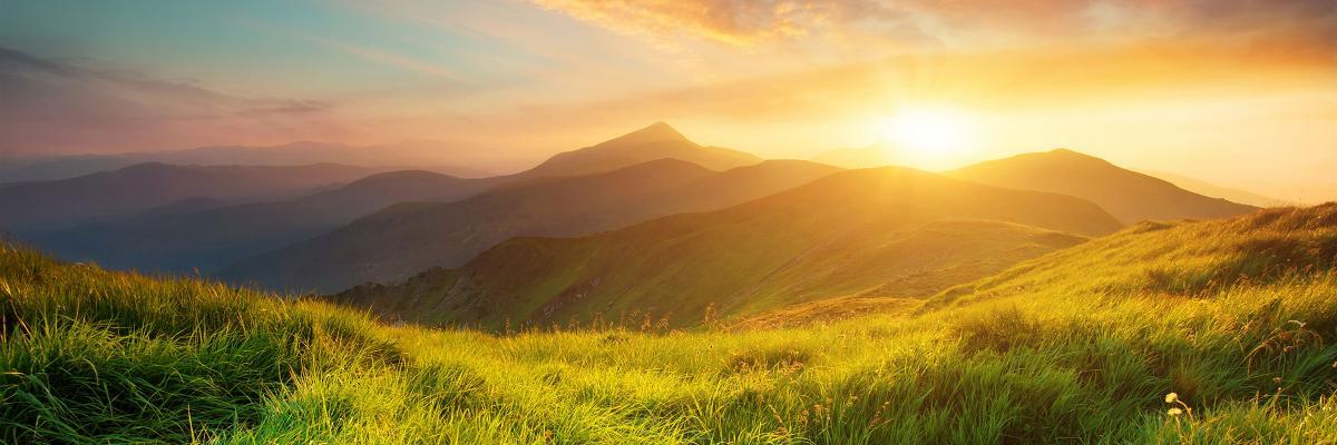 Navigating the Wealth Transfer Landscape