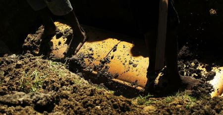 coffin dirt
